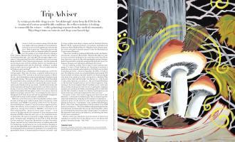 Trip Adviser | Vogue